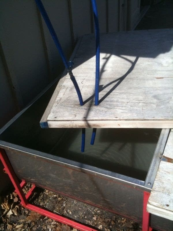 Maple Sap Bin