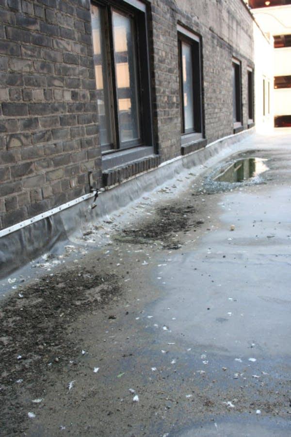 Pigeon poop litters a St. Paul sidewalk
