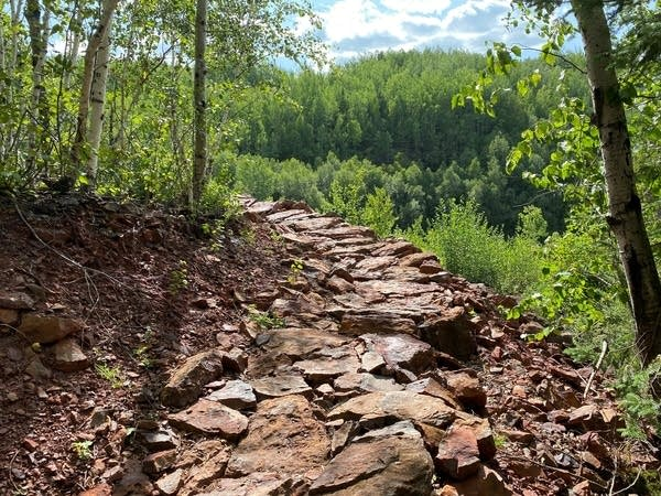 A mountain bike trail at Redhead Mountain Bike Park