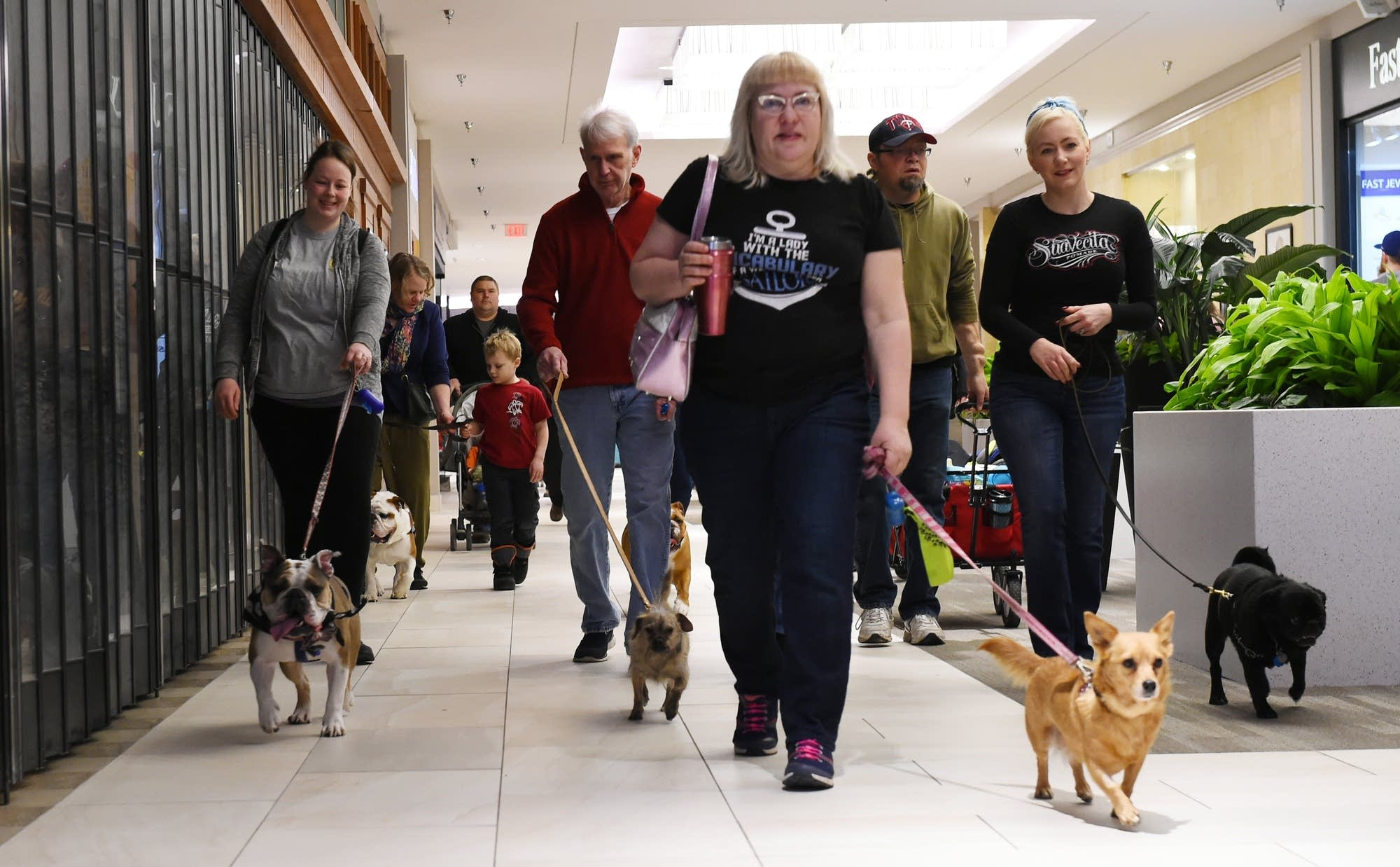 People walk their dogs at Rosedale Mall in February 2018.