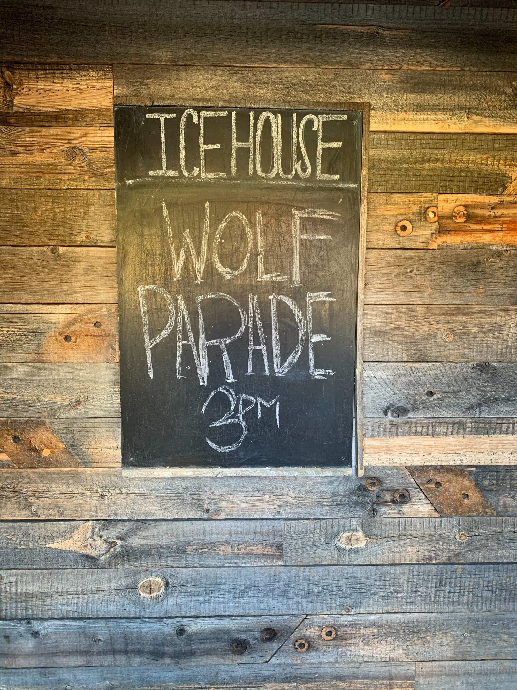 Wolf Parade Microshow at Icehouse