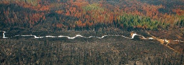 Creek divides burn areas