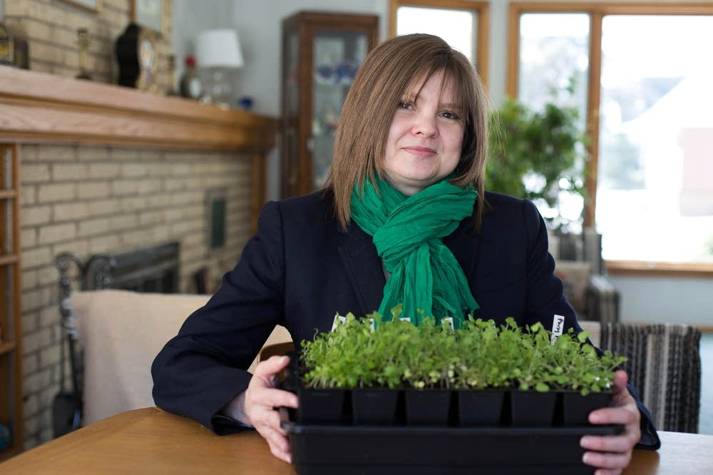 Gardner Fiona Quick and her pansy seedlings
