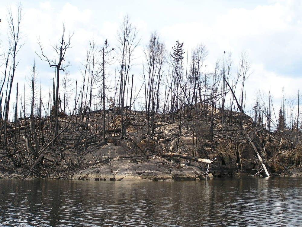 Cavity Lake Island