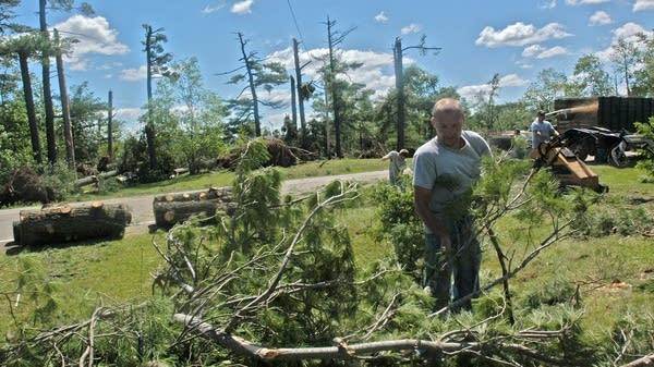 Workers from Timberline Tree Service