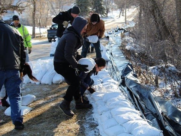 A contingent of University of Minnesota Crookston students place sandbags.