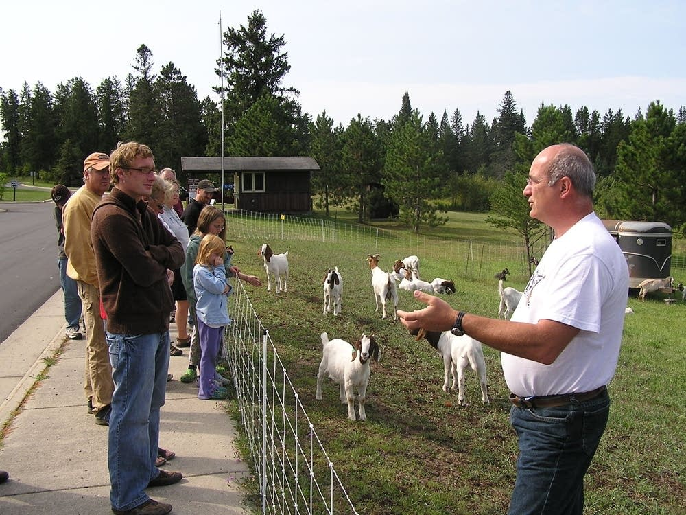 Park visitors