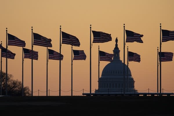 The U.S. Capitol in the background at sunrise.