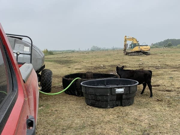 a water tank and cow in a field