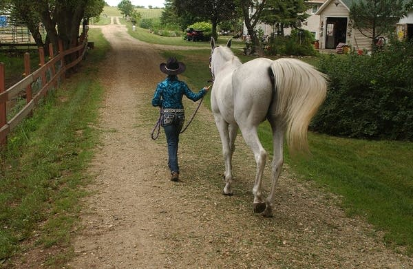 Walking her horse
