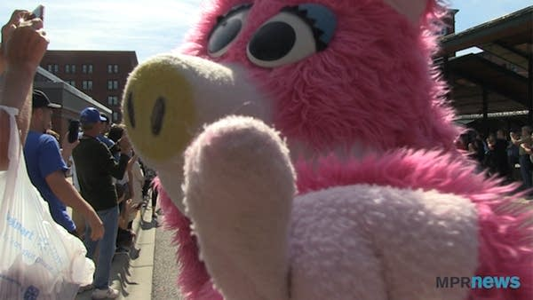 A person in a pig mascot costume points at the camera.