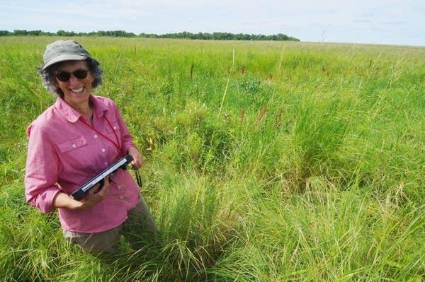 Hannah Texler, plant survey supervisor at the Minnesota DNR.