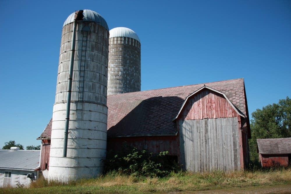 Cala's barn