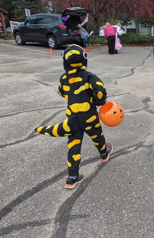 A child walks across a parking lot, dressed in a lizard costume.