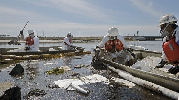 Workers clean up an oil spill