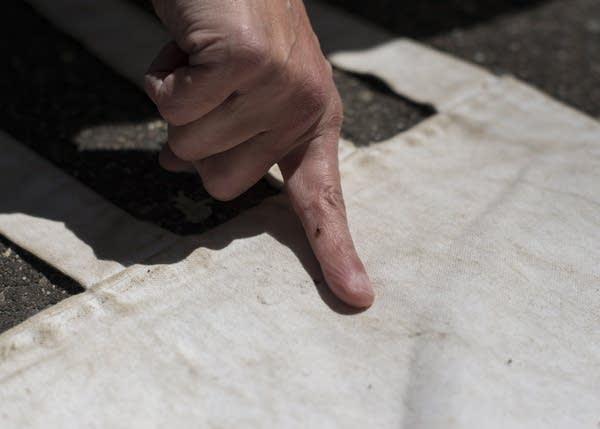 A tick climbs up Dave Neitzel's finger.