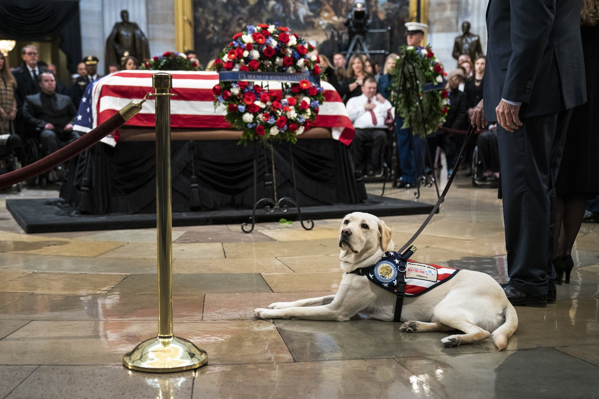 Sully sits near the casket of the late President George H.W. Bush.
