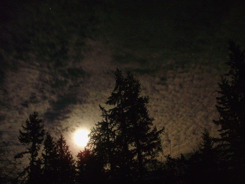Nighttime cirrocumulus clouds