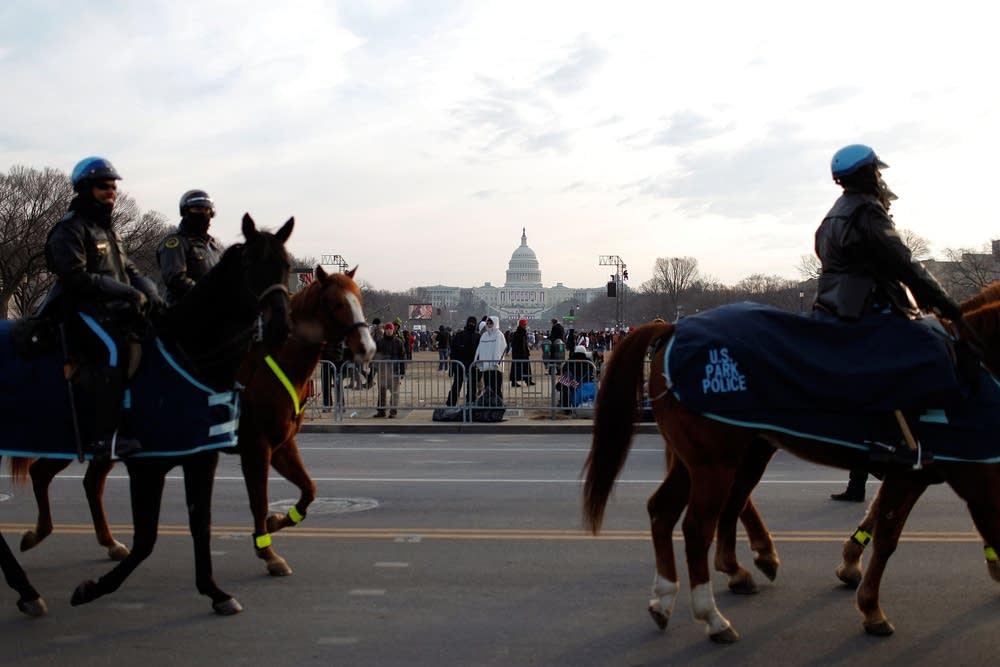 Horse patrol