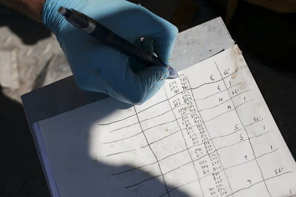 Biologist Will French records information about ciscoes.