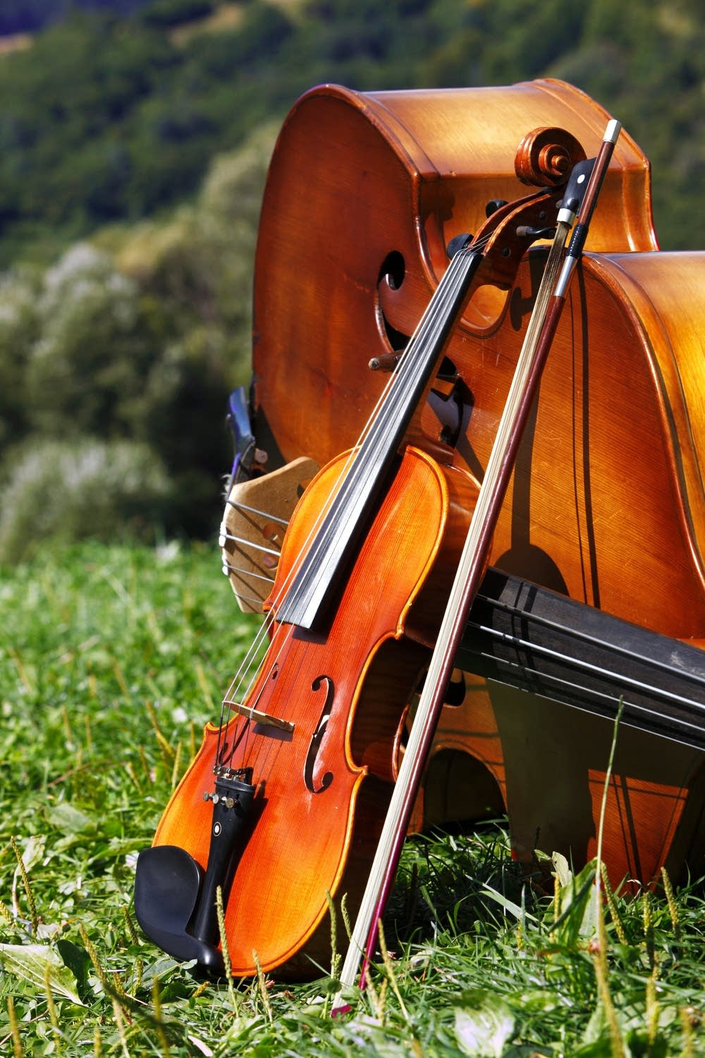 Violin and Cello