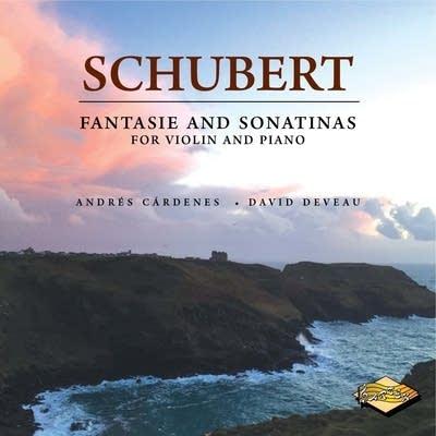 E6a456 20170106 franz schubert violin sonata in d major