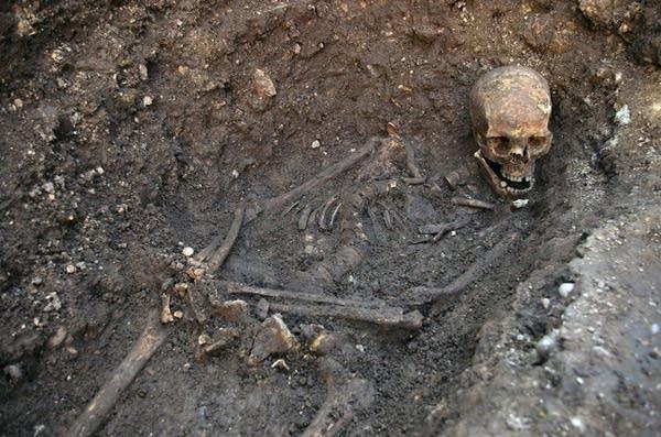Richard III remains