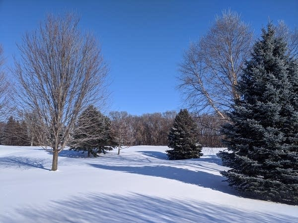 Blue sky and snow cover at The Weather Lab