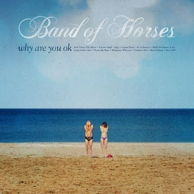 8c1666 20160617 band of horses why are you ok