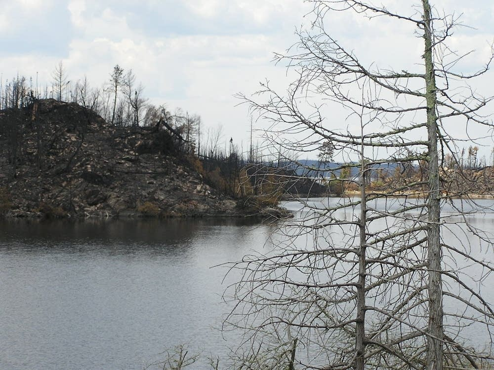 Burned island