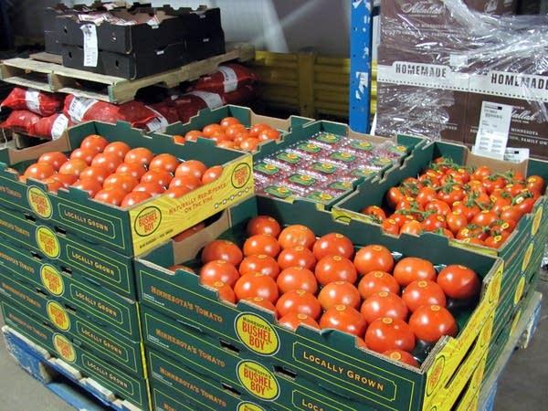 Bushel Boy tomatoes