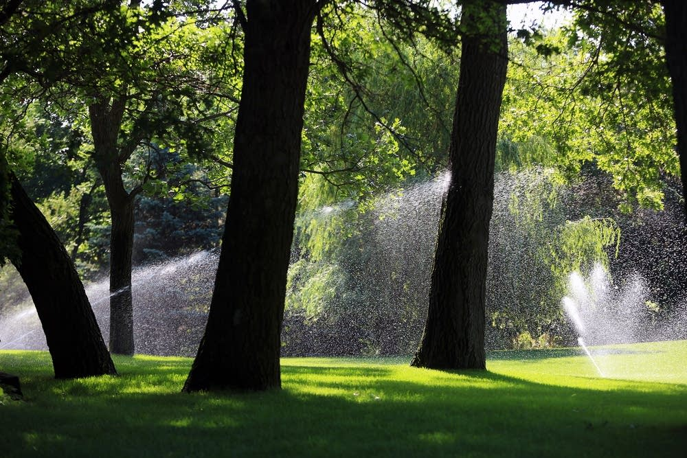 Irrigating an Andover lawn