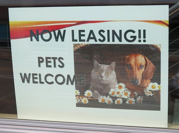 "A sign with a picture of a cat and dog says, ""Now Leasing!! Pets welcome."""