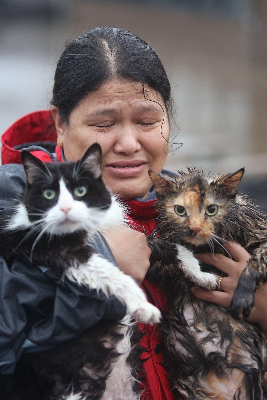 Saving her pets