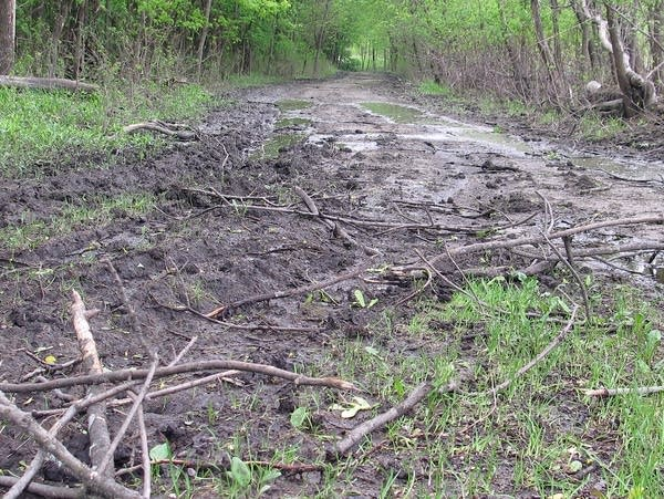 Mud and flood debris cover a trail at Fort Snelling State Park