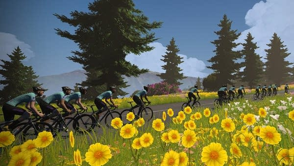 A sample shot of the virtual Tour de France via Zwift