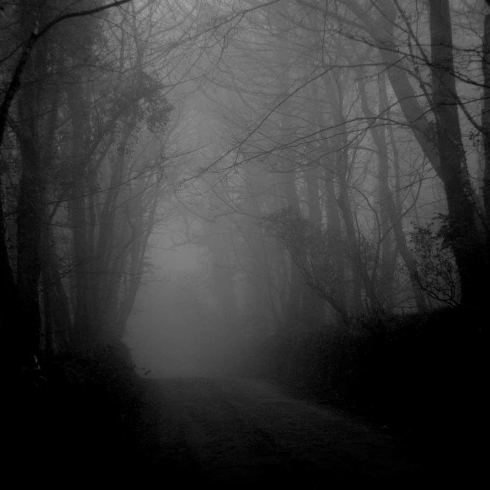 Darkness decends