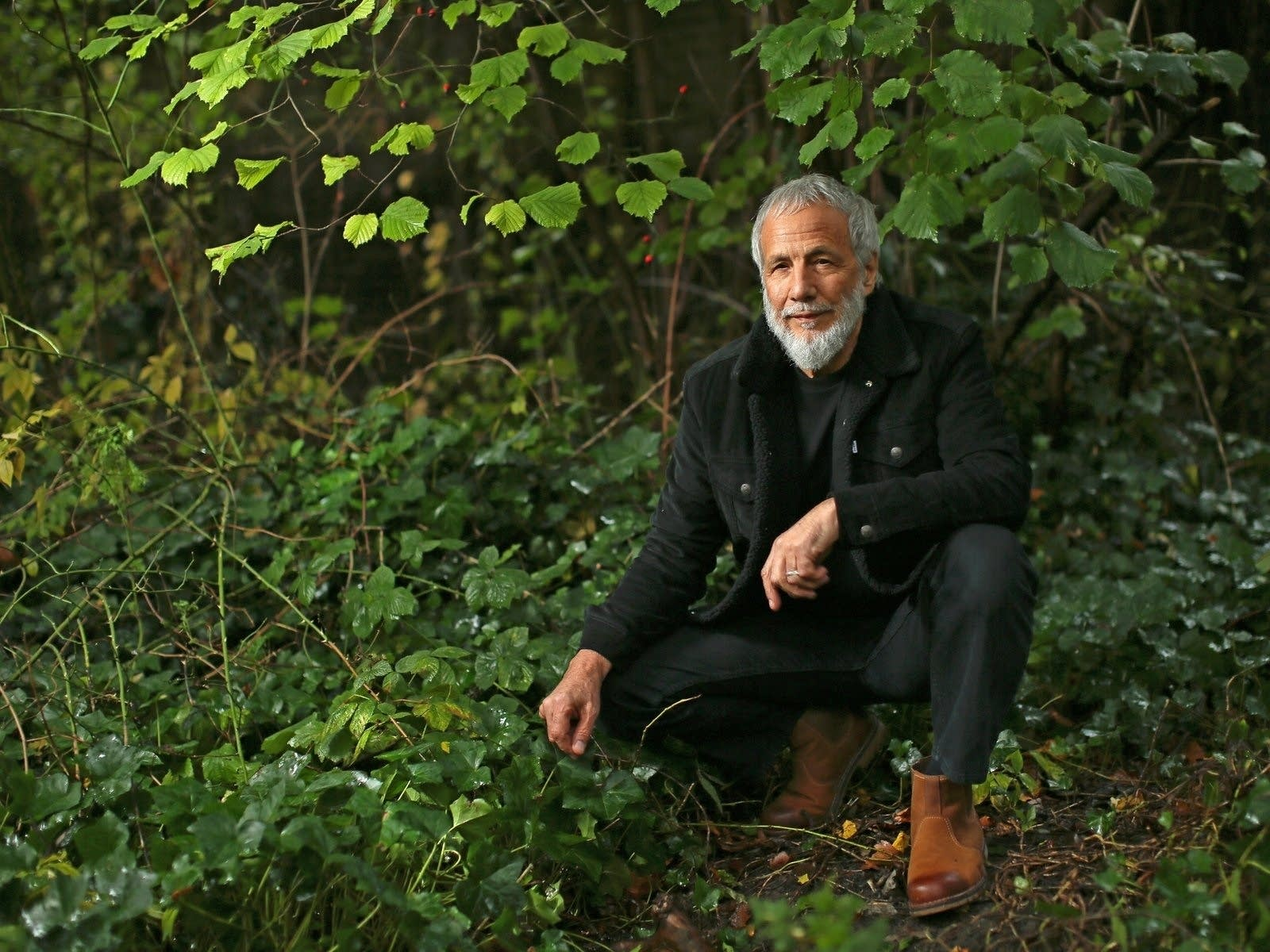 Yusuf Islam, formerly known as Cat Stevens