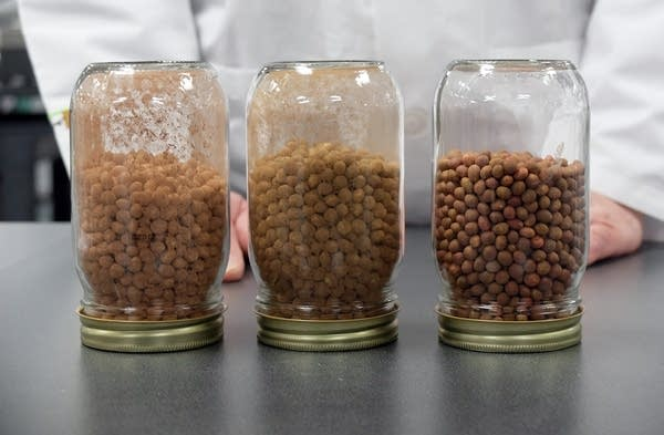 Examples of dust generated by different seed coatings.