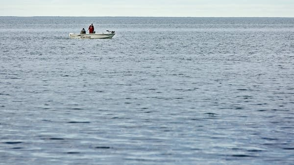 A new study links the decline of walleye in Mille Lacs to clearer water.