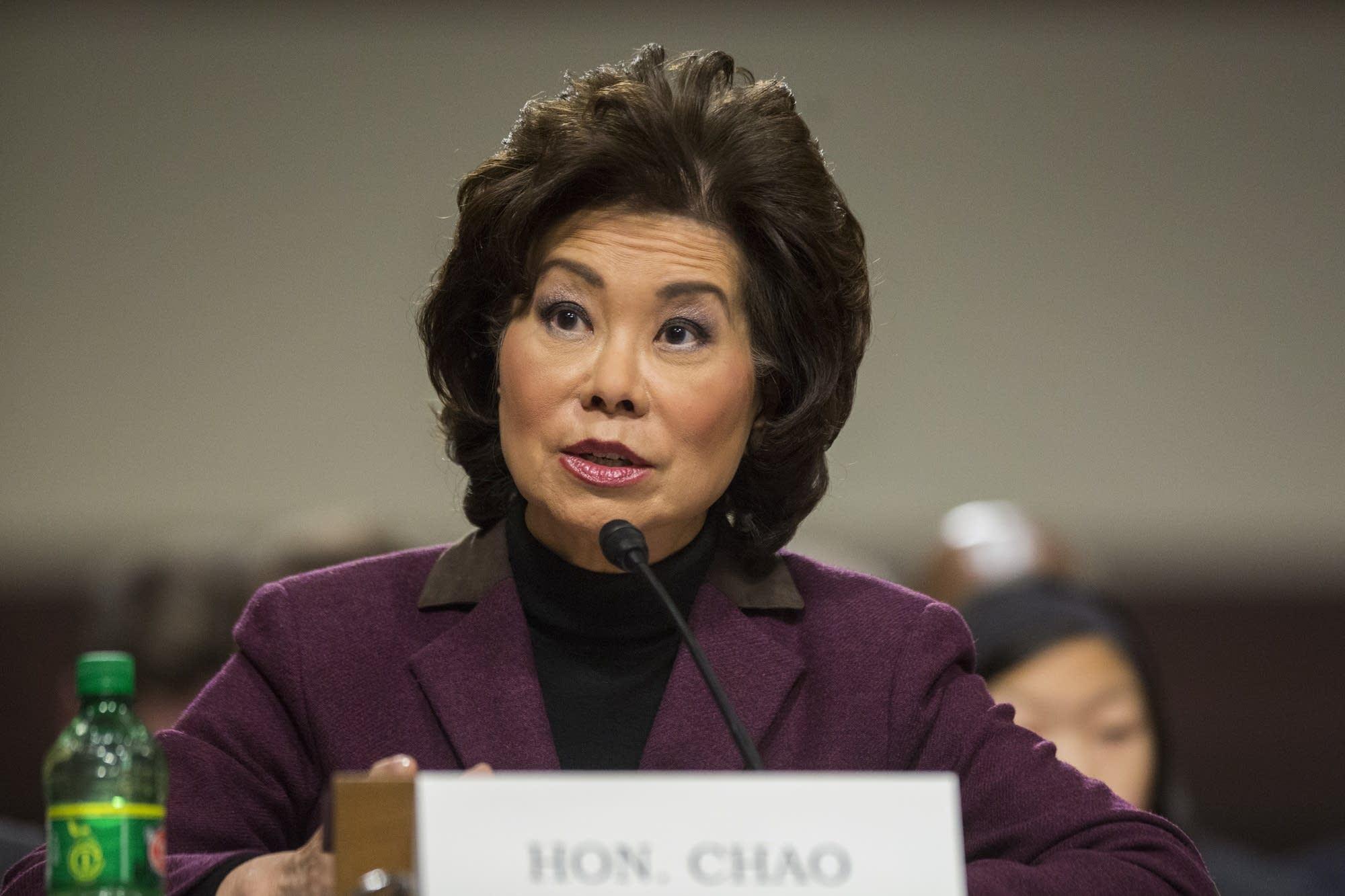 Transportation Secretary-designate Elaine Chao