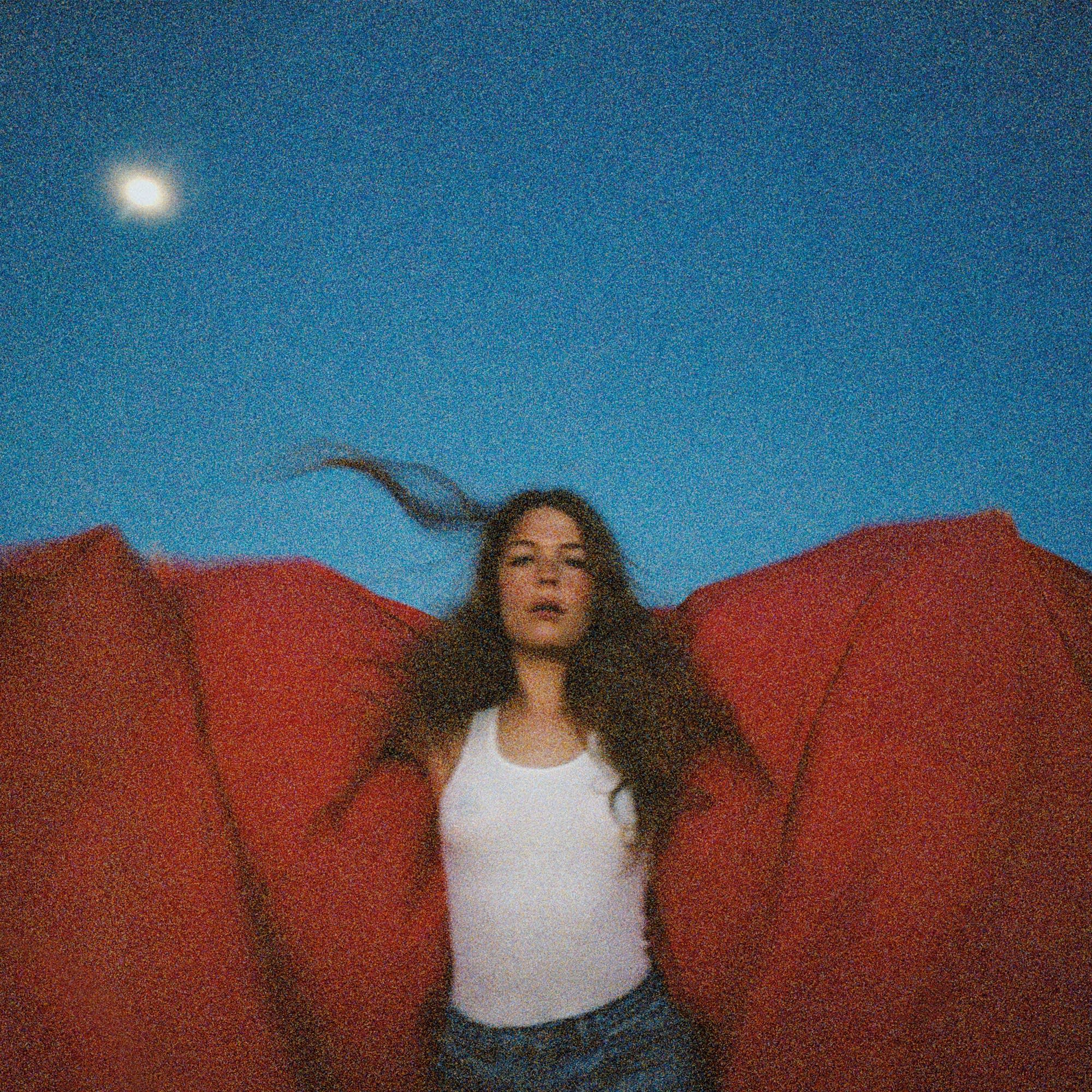 Maggie Rogers, 'Heard It in a Past Life'