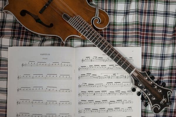 The mandolin is part of the string instrument family.