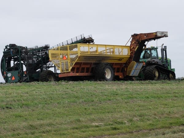 a sugar beet harvester in a field