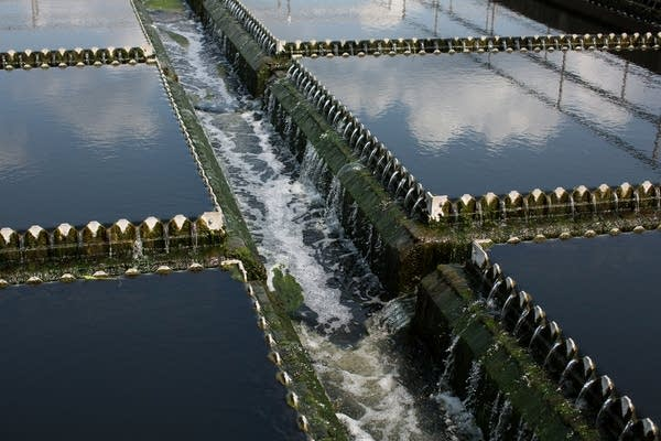 Treated wastewater