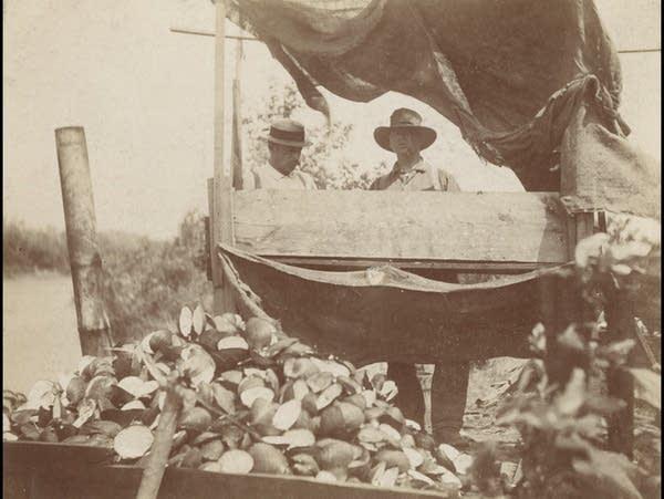 'Clam fishing' in Minnesota