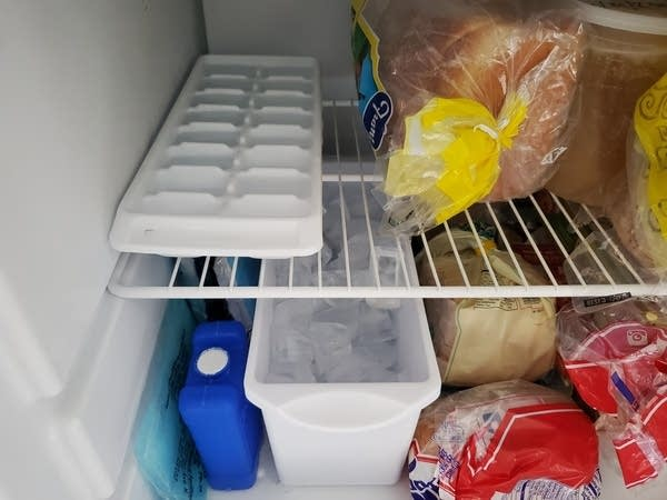 A peek at Andrew's ice inside his freezer
