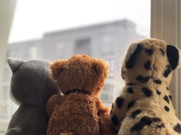 Bears sit in a window overlooking downtown Rochester.