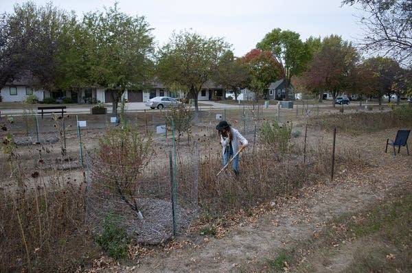 A person standing in a fenced off garden in a neighborhood.