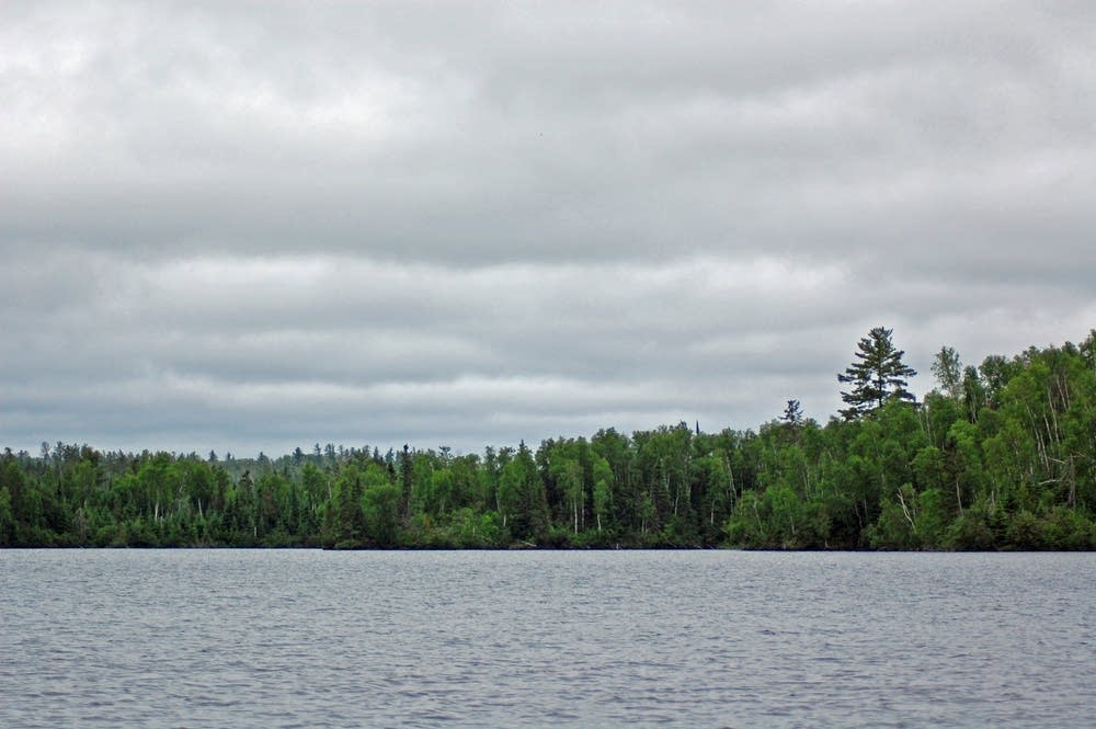 The Moose Lake horizon